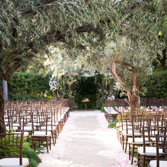 Enchanted forest wedding arch for Enchanted gardens wedding venue